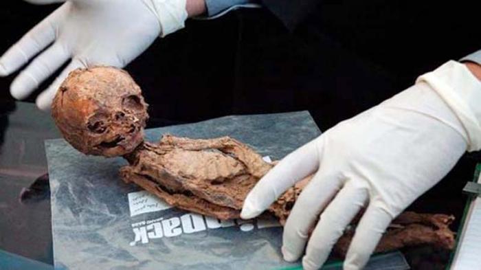 Este cuerpo momificado de 25 centímetros fue encontrado en la provincia iraní de Kermán en el 2005 y desató la teoría de la existencia de una población de enanos. FOTO: IRINN