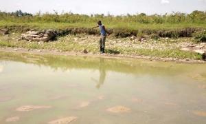 estanque de agua