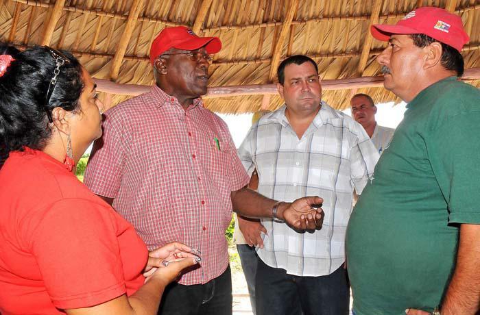 Avanza programa inversionista arrocero en Cuba
