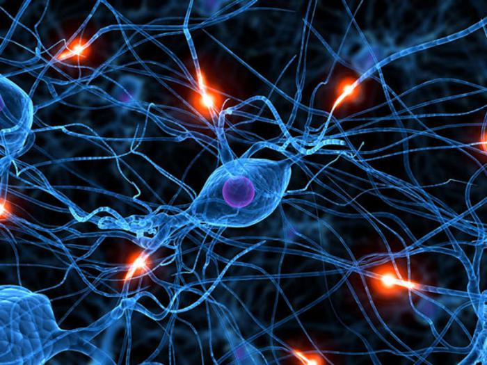 Twenty Cubans undergo deep brain stimulation to fight Parkinson