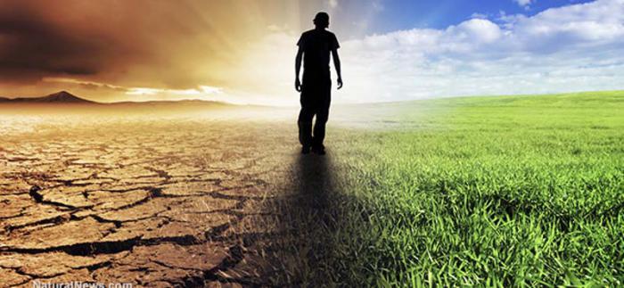 La tesis es sencilla: no puede haber crecimiento infinito en un planeta con recursos limitados.