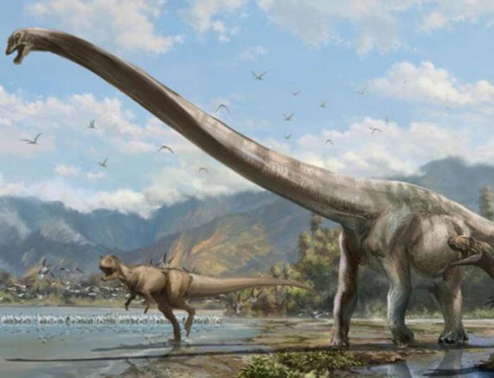 Dinosaurio. El dinosaurio más cuellilargo