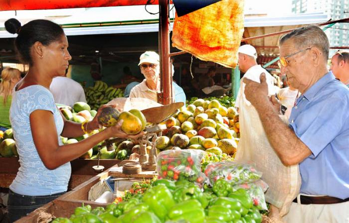 Cuba promueve estrategias para estimular la producción de alimentos