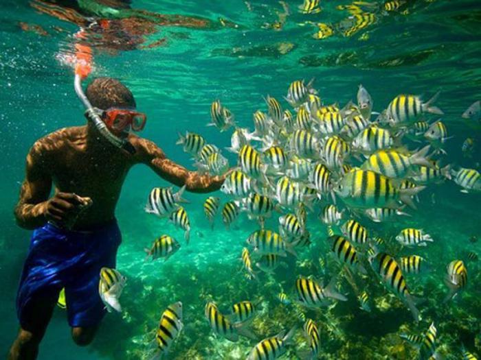 Le Congrès des Sciences de la mer s'ouvre à La Havane