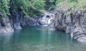 Al cierre del 2014 el índice de boscosidad alcanzó el 29,8 % del archipiélago cubano.