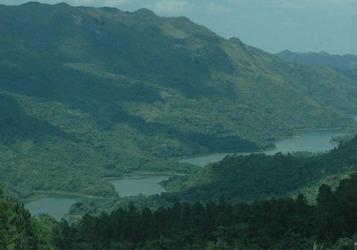 Bosques cubren el 30,6 % de la superficie de Cuba