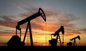 Los países exportadores de petróleo quieren estabilizar los precios a un nivel aceptable.