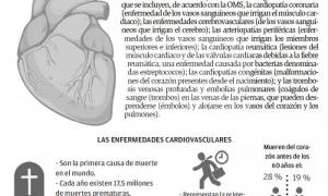Textos: Lisandra Fariñas Acosta Diseño: Fabio Vázquez Pérez Fuentes: Anuario Estadístico de Salud 2015; Organización Mundial de la Salud; III Encuesta Nacional de Factores de Riesgo, 2010; Conferencia de prensa ofrecida por expertos del Instituto de Cardi