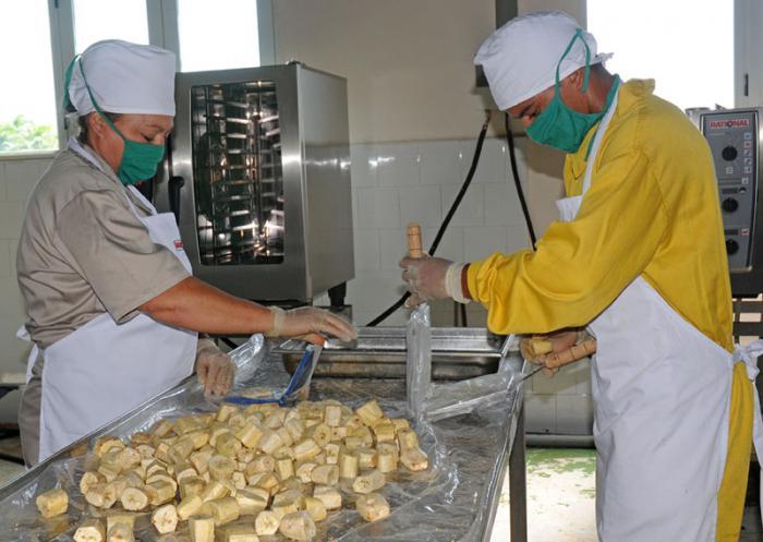 Los tostones, en La Cuba, instrumentan un ciclo cerrado de producción