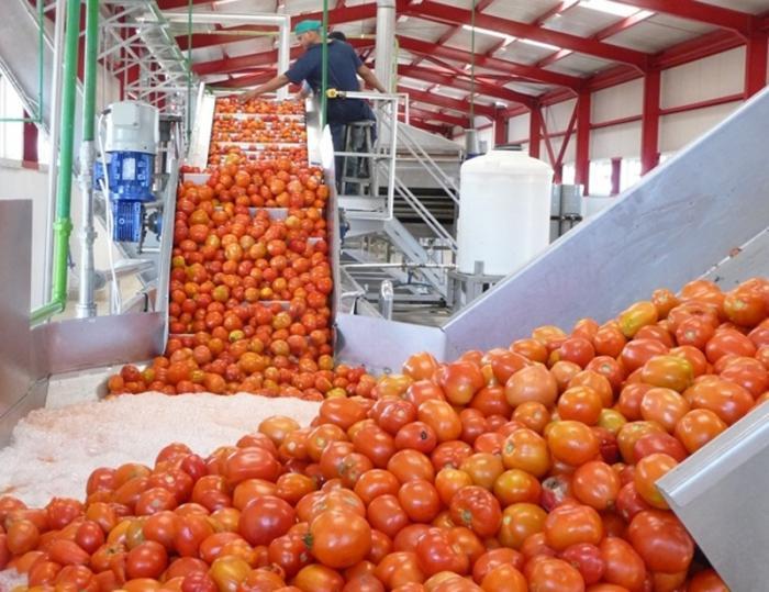 Incrementar la capacidad de procesamiento permitirá hacer frente a los picos productivos de la agricultura. foto: Jorge Luis Merencio