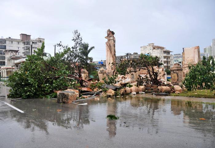 Arbol caido por el huracan Irma en la Calle Calzada y  2