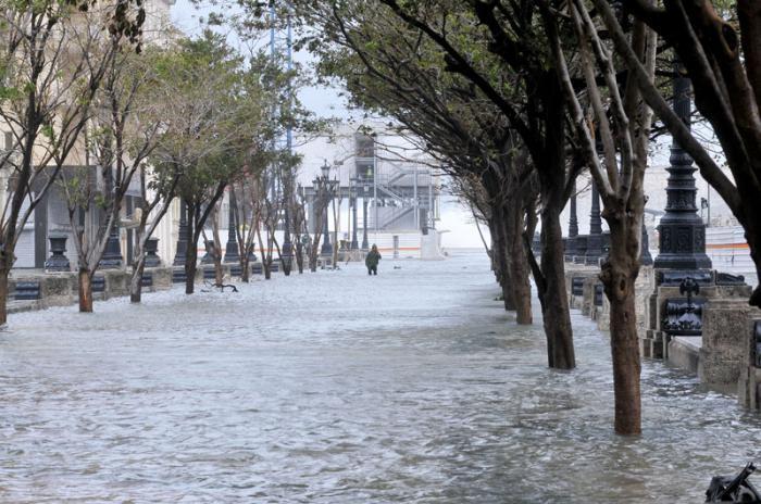 Huracán Irma en la capital. El domingo en la mañana mucha población en la calle y muchos turistas fotografiando las secuelas. Prado.