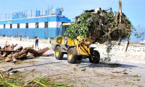 Cuba immersed in recovery