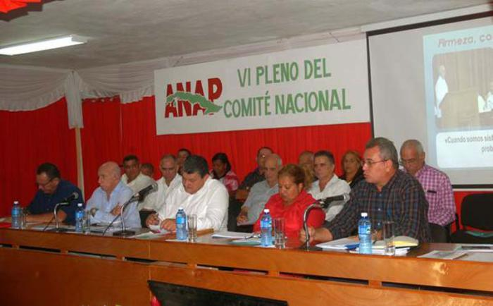 Sesionó en Artemisa Pleno del Comité Nacional de la ANAP