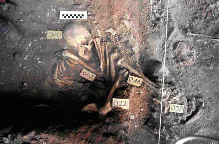 Parte de los restos humanos localizados en el sitio arqueológico Canímar Abajo, uno de los más  estudiados en Cuba. Foto: Cortesía del doctor Roberto Rodríguez
