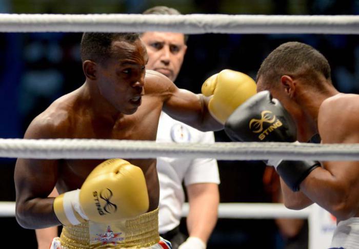 Domadores despluman a Gallos y estarán en final de Serie Mundial de Boxeo