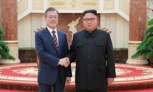 Ambos mandatarios aspiran a convertir la zona desmilitarizada en un área de paz. Próximamente se iniciarán los trabajos para reconectar las vías férreas y las carreteras transfronterizas