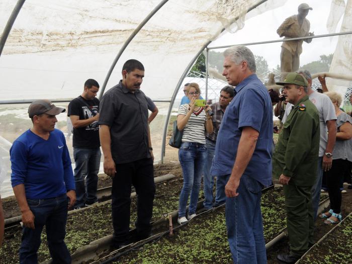 Díaz- Canel chequea recuperación en Pinar del Río tras huracán Michael