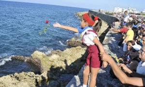 Flores para Camilo