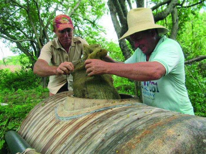 Les Pupo Bermúdez assurent que les avantages des formules qu'ils utilisent pour revigorer les terres justifient le temps qu'ils consacrent à leur préparation.