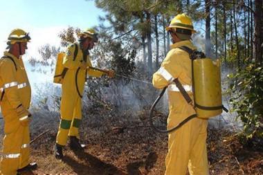 En Cuba, incremento de incendios forestales en la mayoría de las provincias