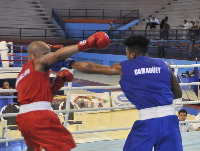 Boxeo en Cuba no cuelga los guantes (+ Video)