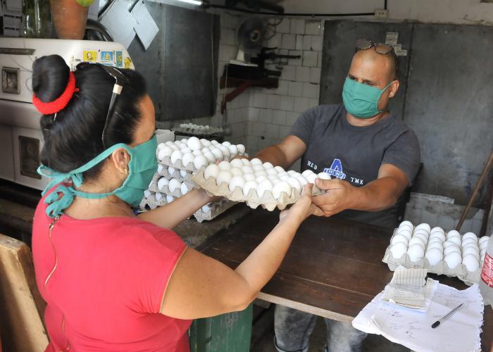 Proteccion contra el coronavirus ,entrega de prodoctos normados.