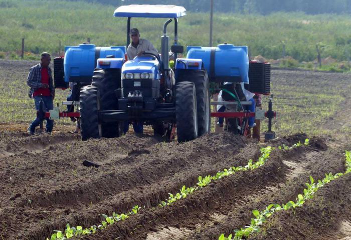 Nuevo modelo de gestión económica para flexibilizar en Cuba la relación laboral y salarial del trabajador agropecuario
