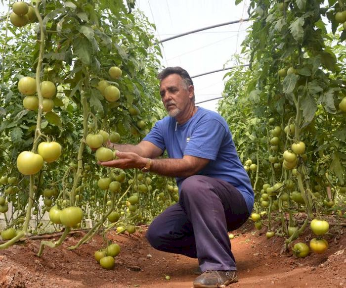 Rafael Santiesteban Pozo, Vorsitzender des Kleinbauernverbandes ANAP